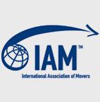 Logo IAM